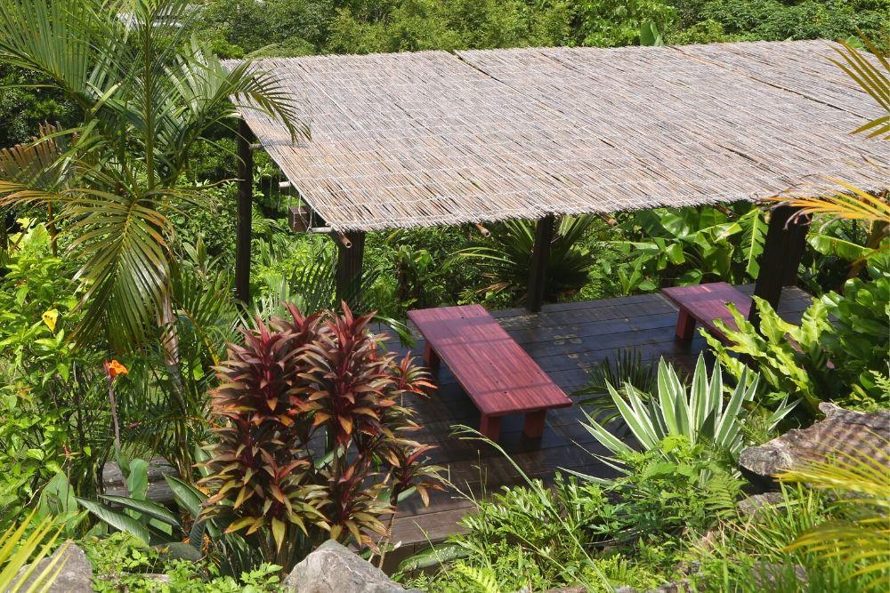 亜熱帯茶屋の屋外席