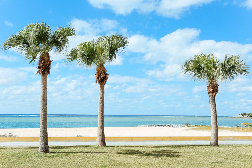 青い海のアラハビーチ
