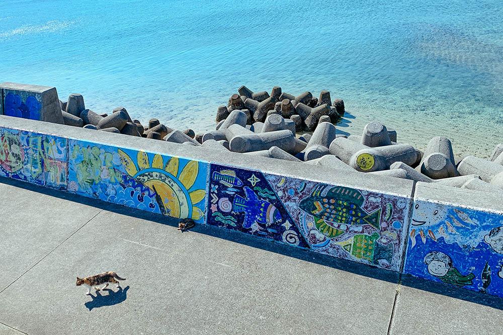 ニャンコ(猫)に会える沖縄のビーチ
