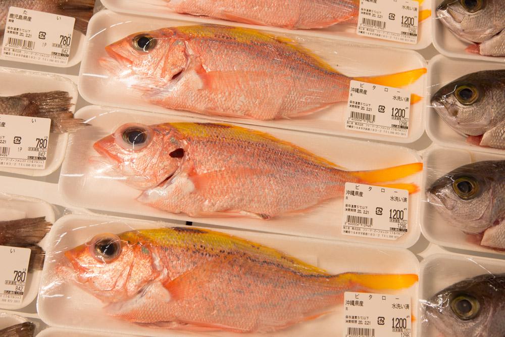 うるマルシェの魚2