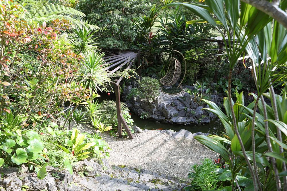 池に浮かぶ島のようなお庭