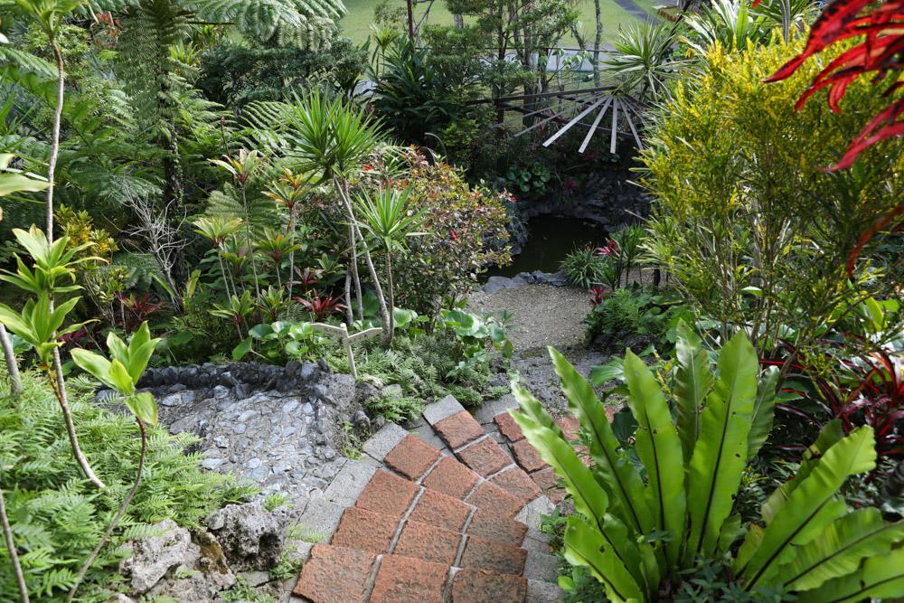 読谷村のフルカフェの庭