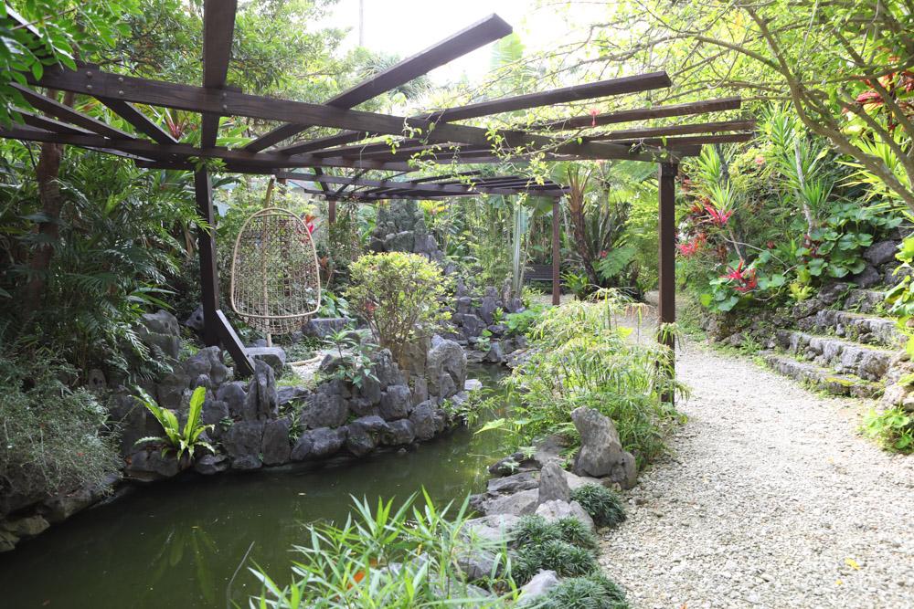 沖縄らしい南国の植物