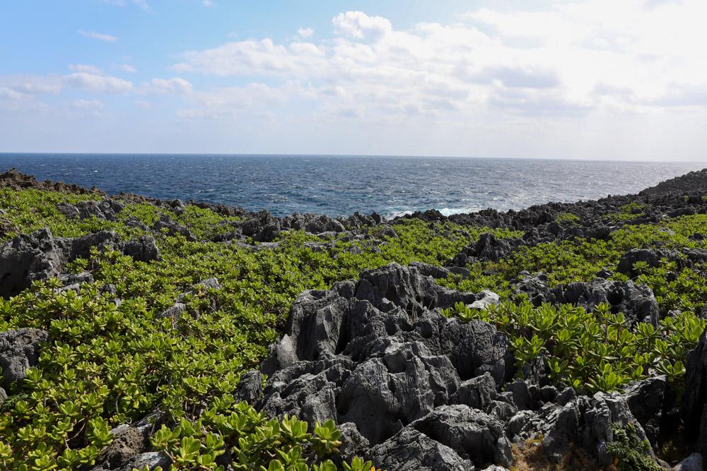 朝日が照らす岬