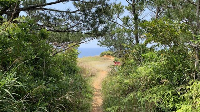 ジュゴンの丘 登山コース