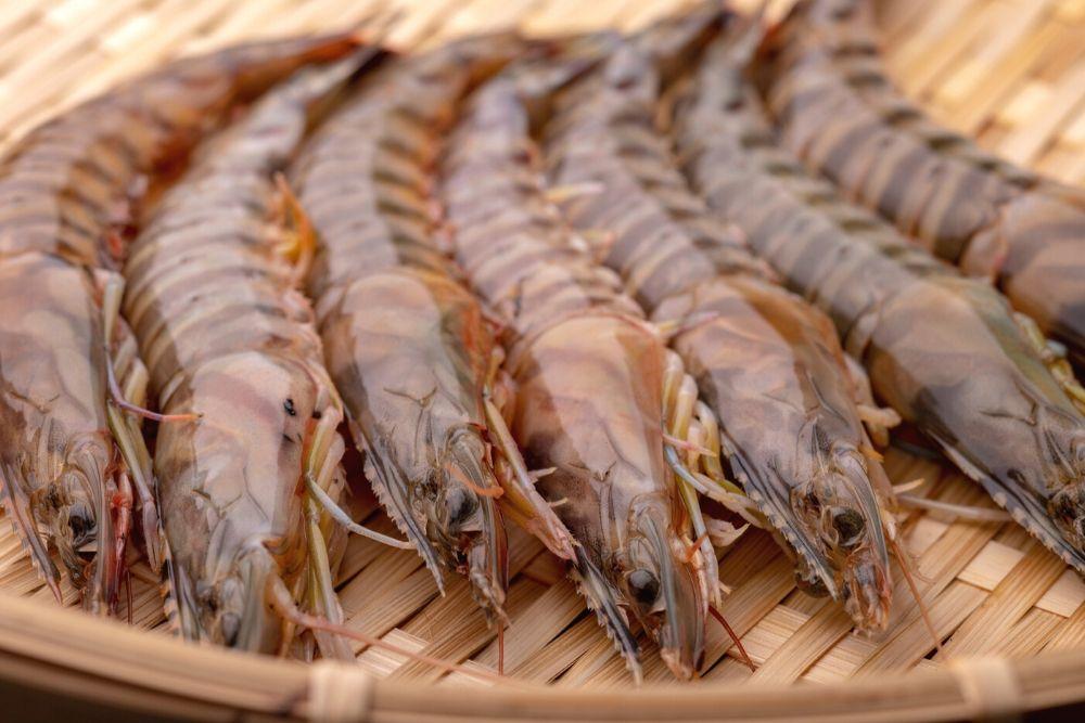 沖縄で人気の食べ物 車えび