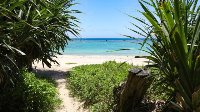 沖縄北部のビーチ