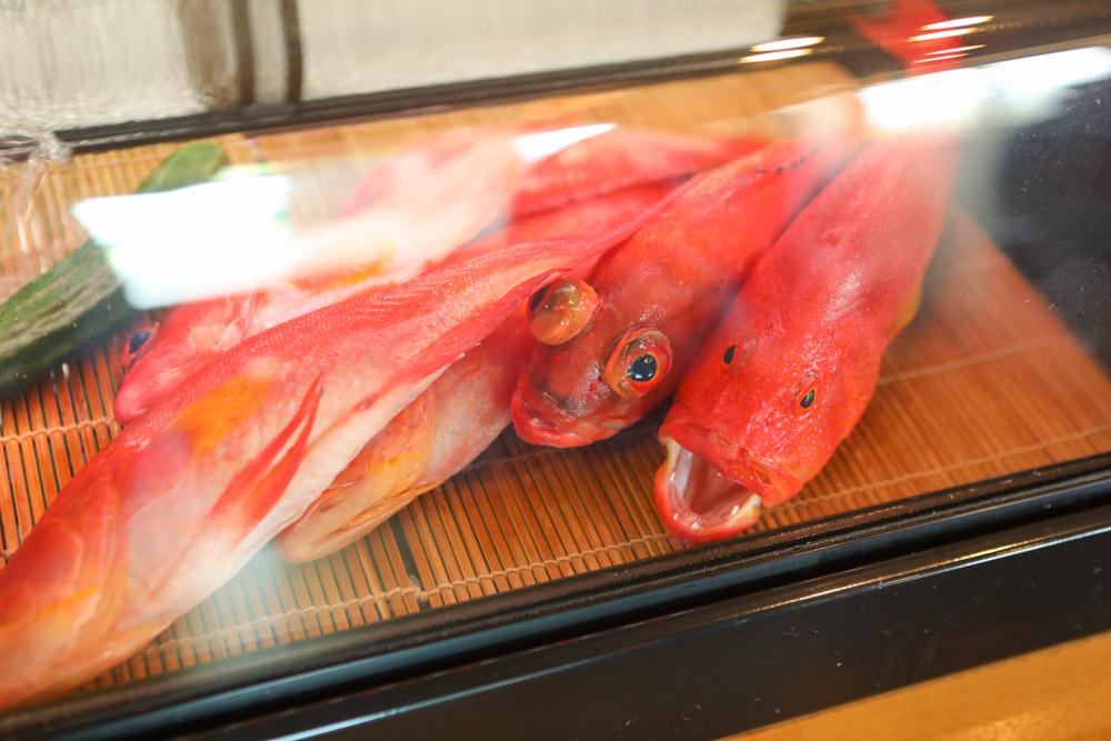 ショーケースの魚