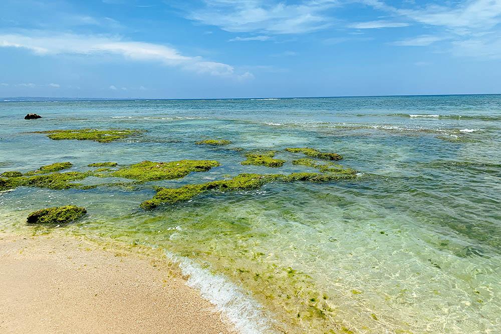 木綿原(もめんばる)ビーチの水質