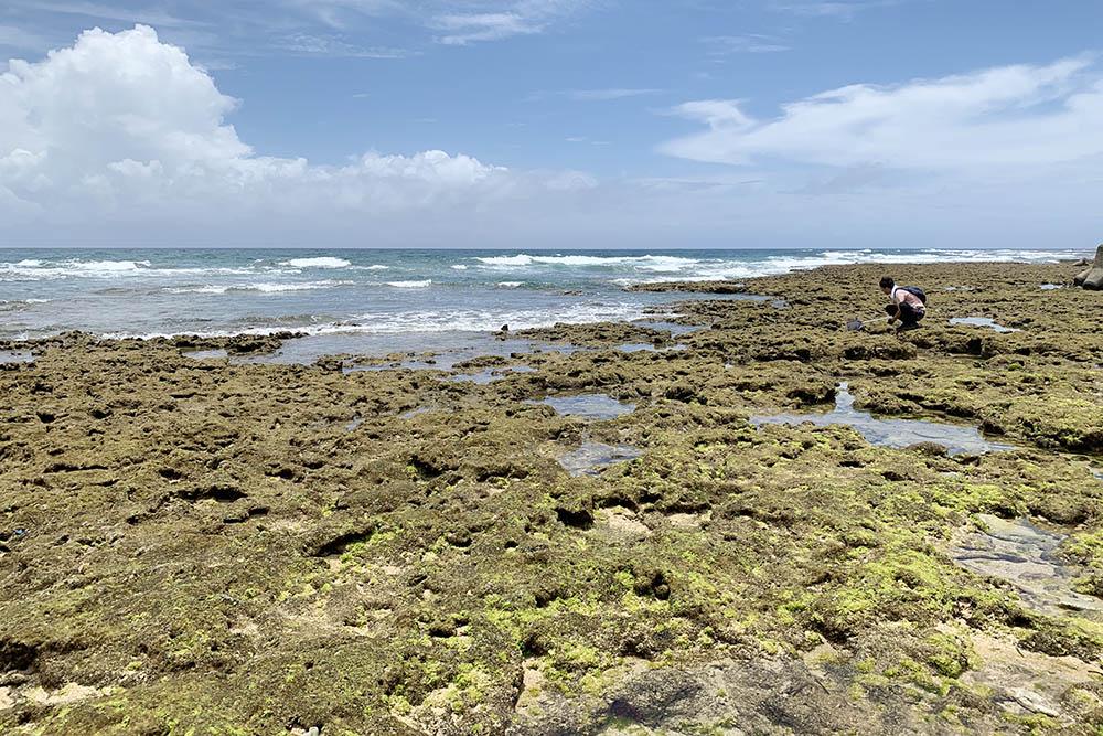 沖縄の海の干潮時間を調べるには