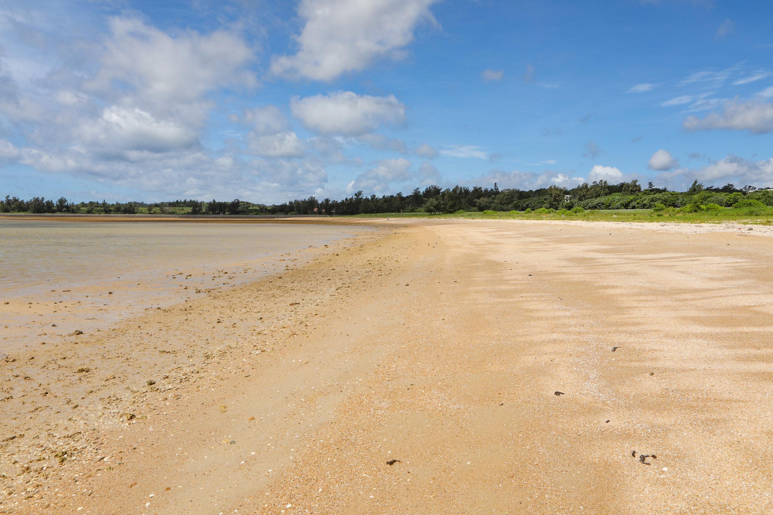 散歩にぴったりな砂浜