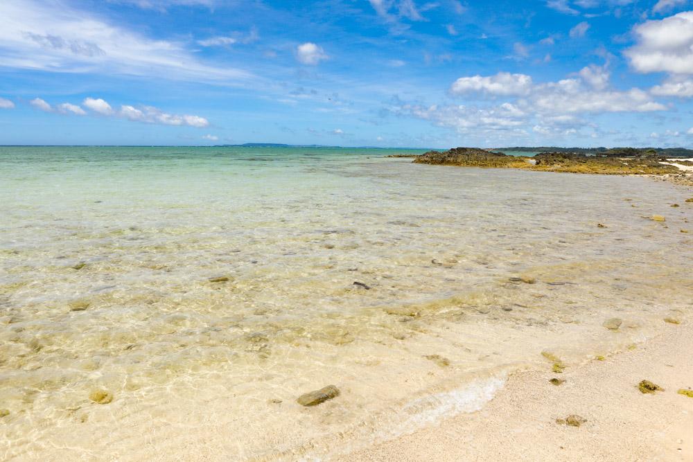 開放的なシーグラスビーチ
