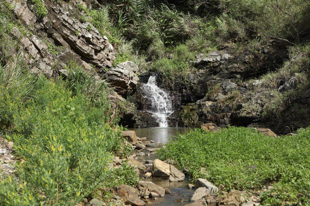 山側に小さな滝