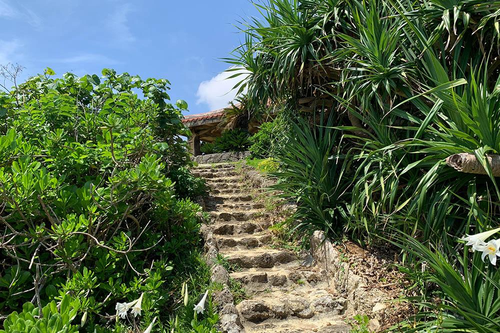 東屋から下へ降りる階段