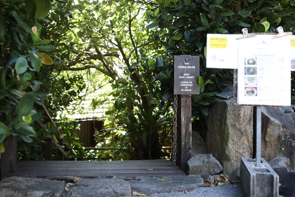 チャハヤブランの入り口
