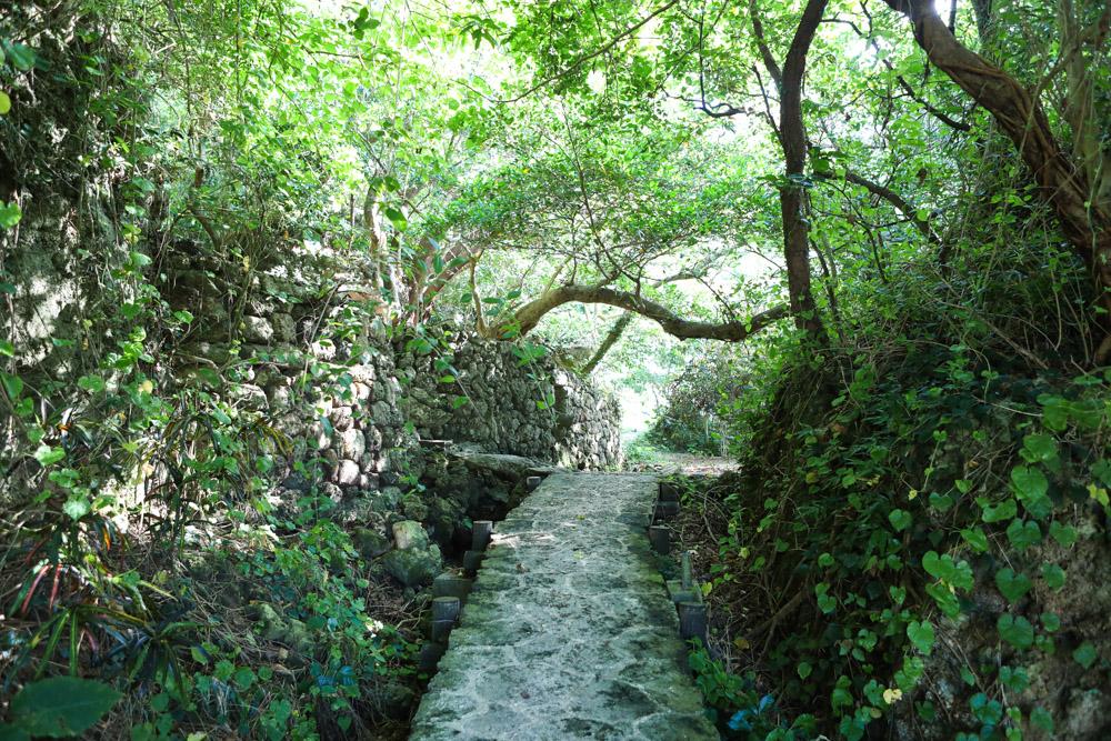 浜川御嶽への道