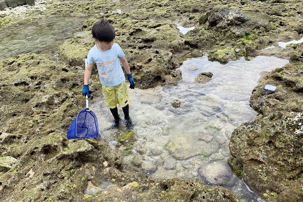 沖縄でこどもと磯遊び
