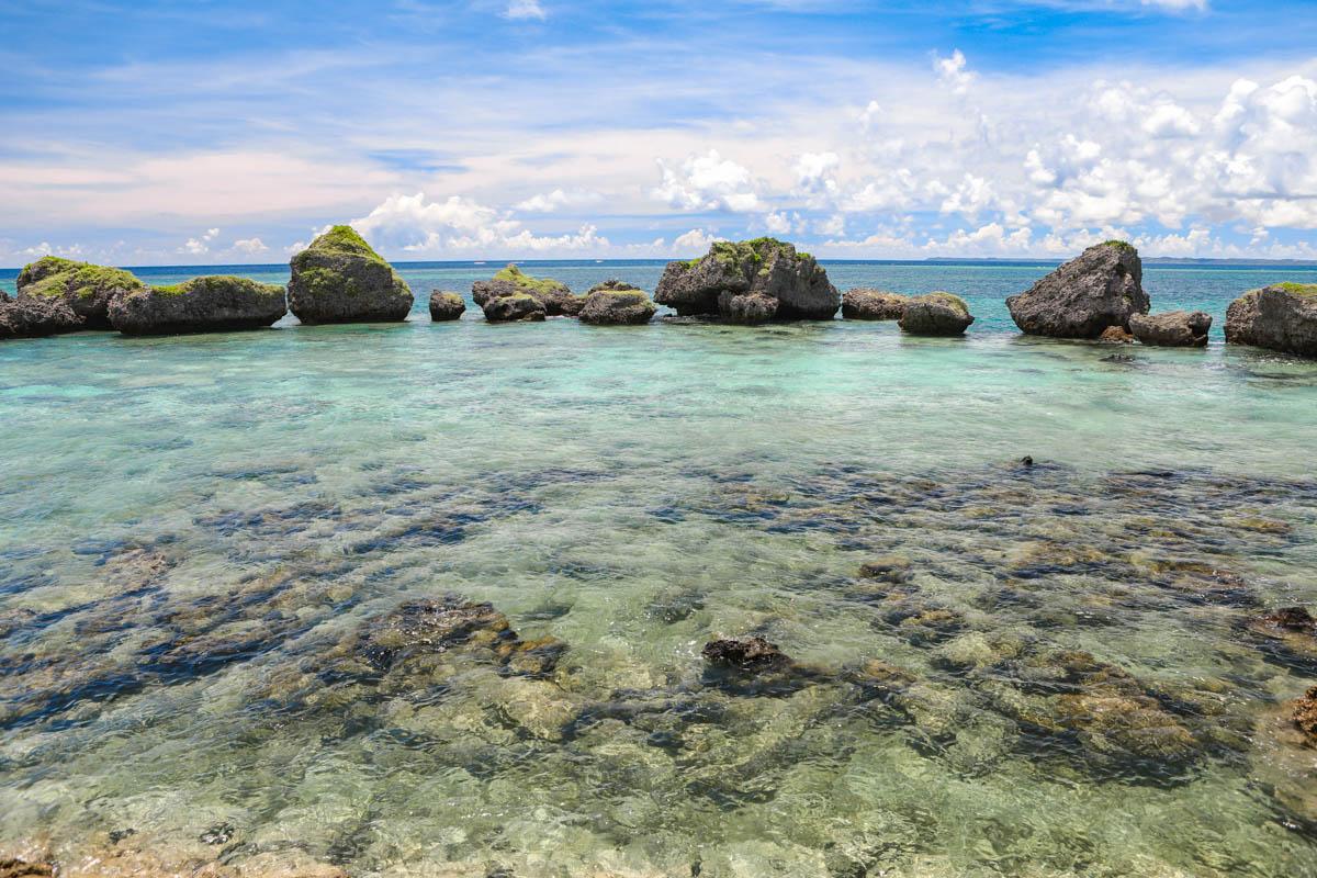 並んだ琉球石灰岩