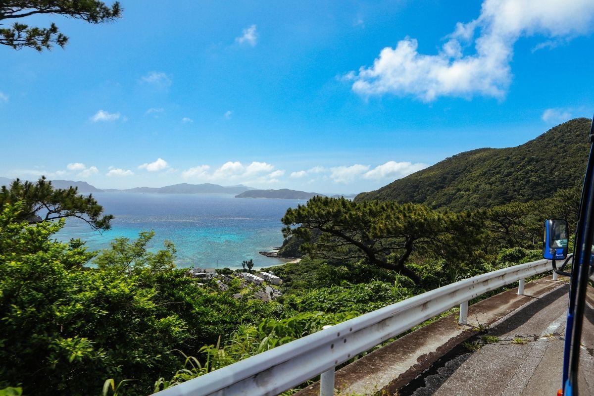 渡嘉敷島の山道