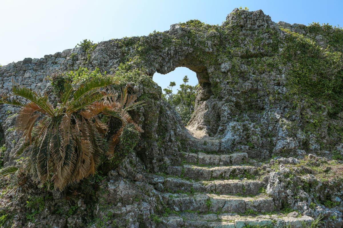 琉球石灰岩の穴