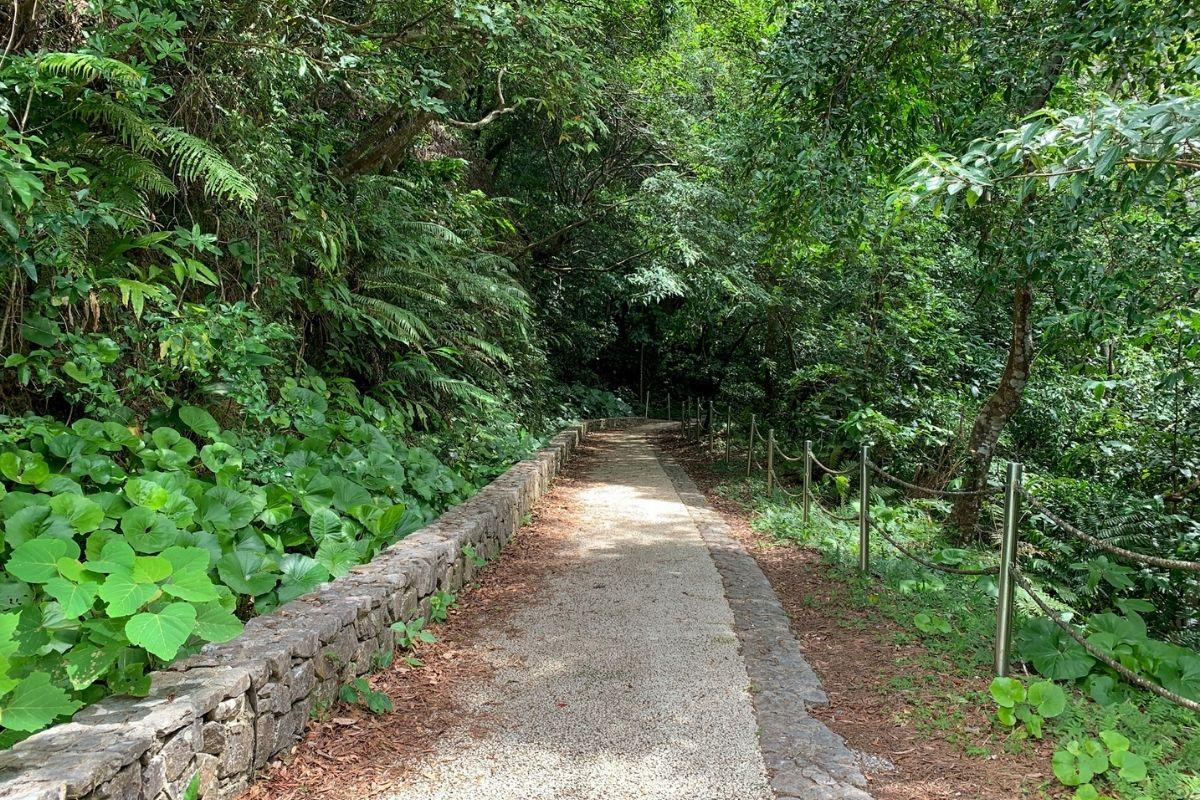 比地大滝の遊歩道
