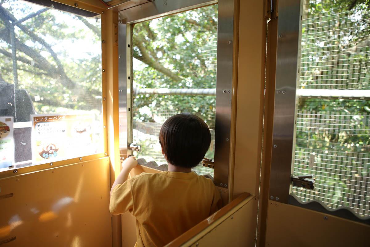 窓から動物観察できる鉄道機関車