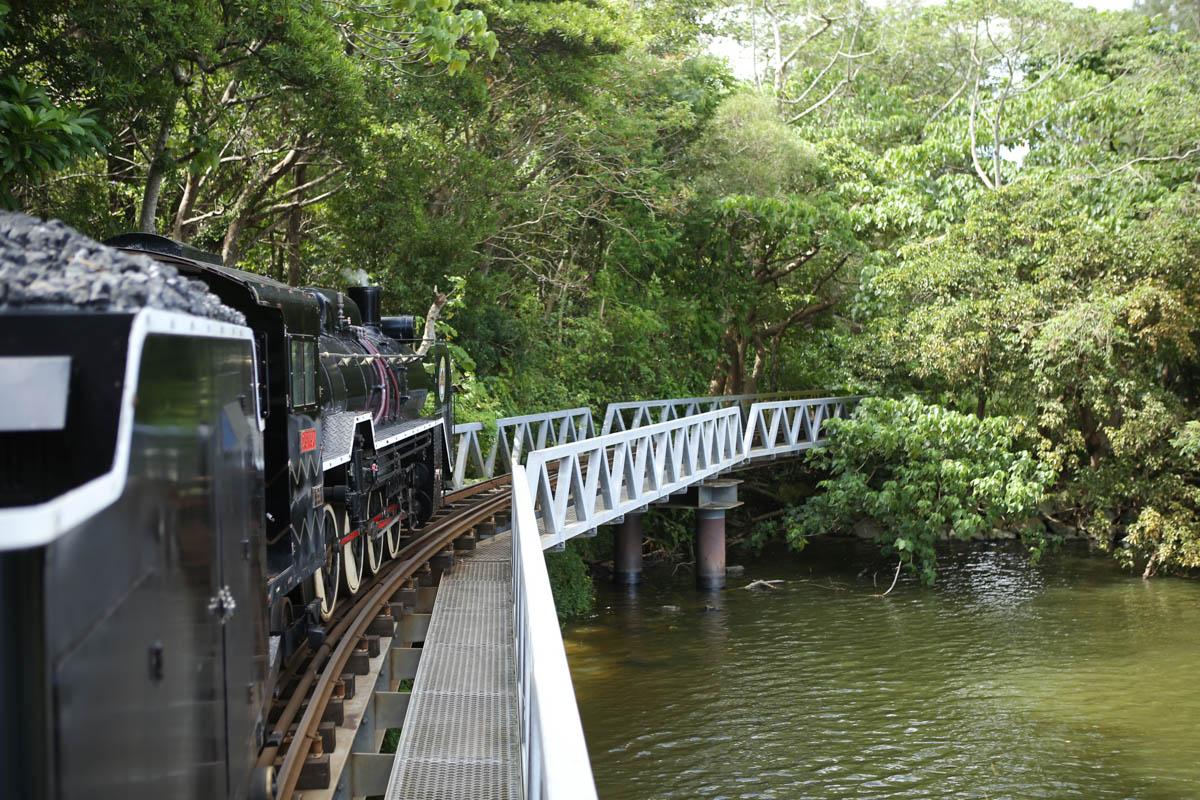 池の上を走る鉄道