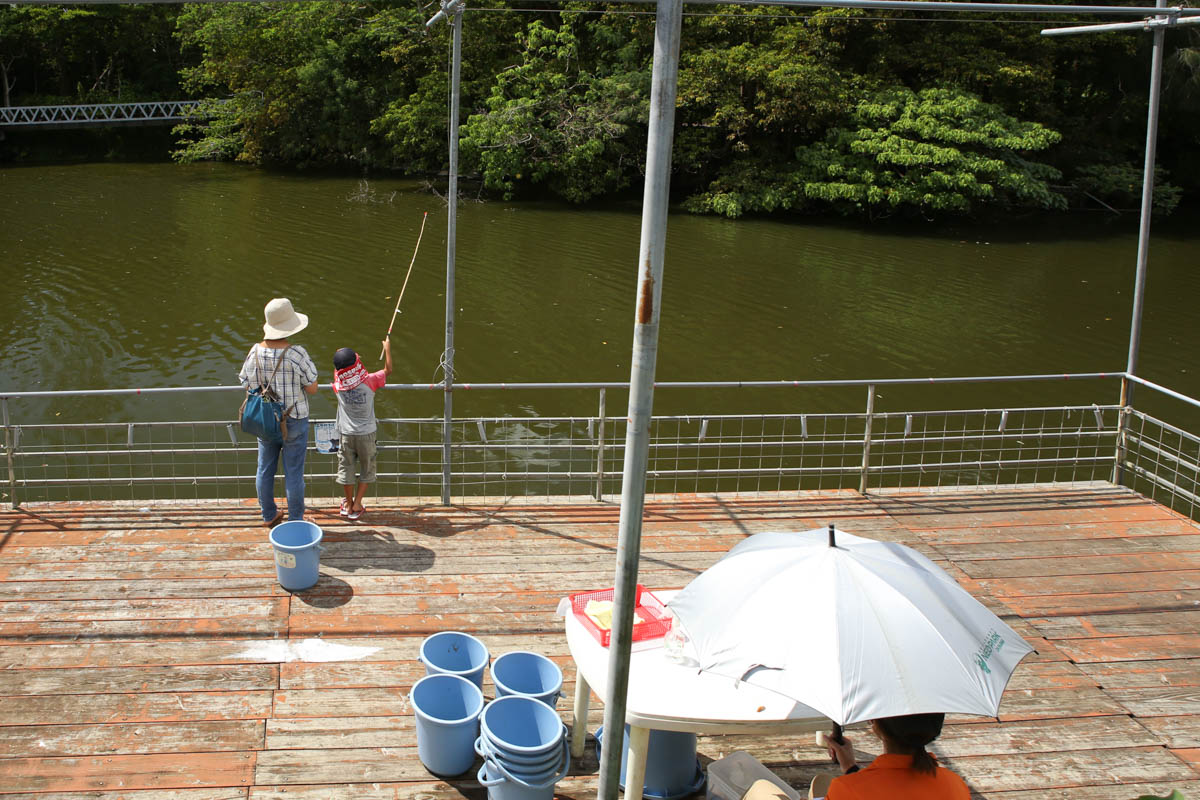 釣りコーナー